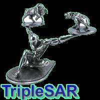 TripleSAR