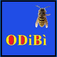 ODiBi
