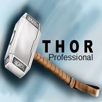 Thor Professional