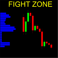 Fight Zone