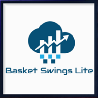 Basket 240 Swings Lite