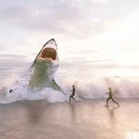 Shark Scalper Pro