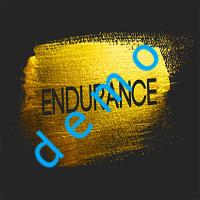 Endurance demo