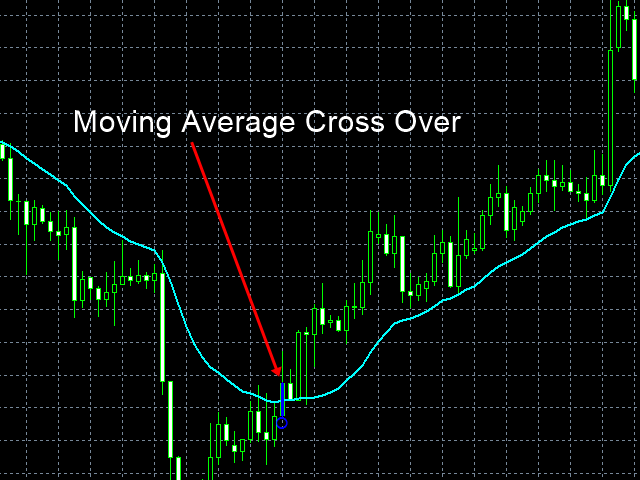 Fractal Moving Average Indicator MT5