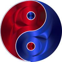 Zen MT5