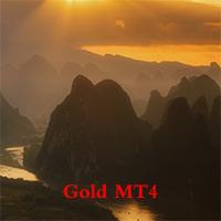 Gold Expert