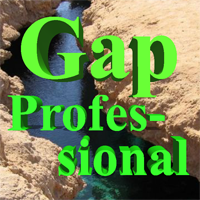 Gap Professional