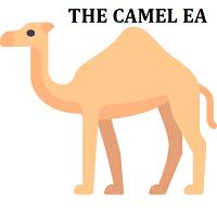 Camel EA
