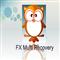 FX Multi Recovery