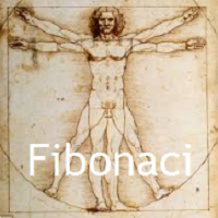Enter Use Fibonaci