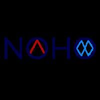 NOHO Market Profile Professional for MQL5