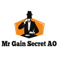 Mr Gain Secret Ao 2