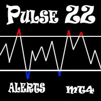 Pulse ZZ