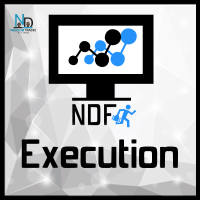 NDFT Execution