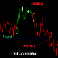 Trend Candle Intuitive