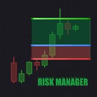 PT Risk Manager