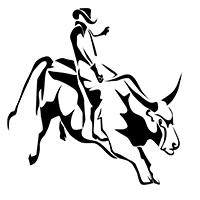 BullsCatcher