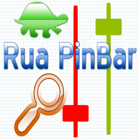 Rua PinBar