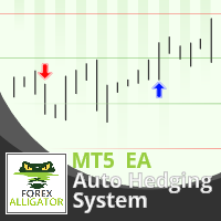 Auto Hedging System