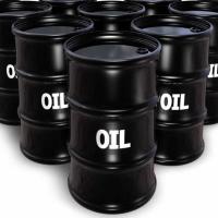 Oil Expert