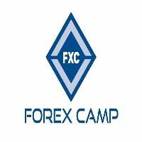 Forex Gump winner
