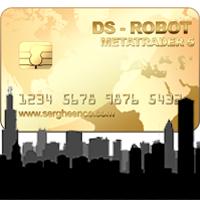 DS Robot