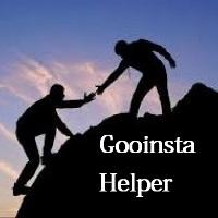 Gooinsta Helper