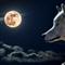 GerFX NightWalker EA