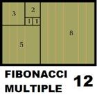 Fibonacci Multiple 12