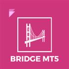 Bridge MT5