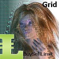 BuySellLimit  N Grid MT5