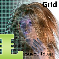 BuyStop and SellStop Grid MT5