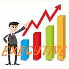 Executive EA