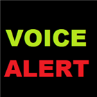 Own Voice High Low Alerts MT5