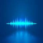 VoiceEscort