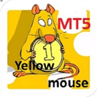 Yellow mouse scalping MT5