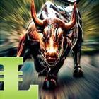 Bulls MACD MT5