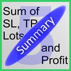 ST Summary Demo