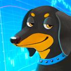 PA Dog