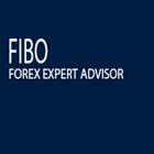 Fibo Expert Advisor