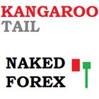 Naked Forex Kangaroo Tail