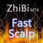 ZhiBi Fast Scalp MT4