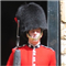 Great Britain Bearskin