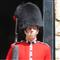 Great Britain Bearskin
