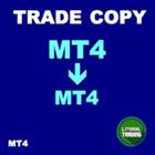 LT Trade Copy MT4