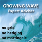 Growing Wave