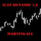 IlanDynamic18