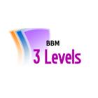 BBM3Levels