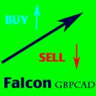 Falcon GBPCAD