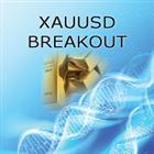 XAUUSD Breakout